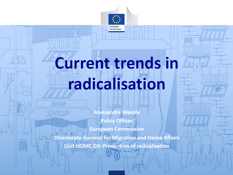 RADPol2020 - Webinar 2 - European Commission