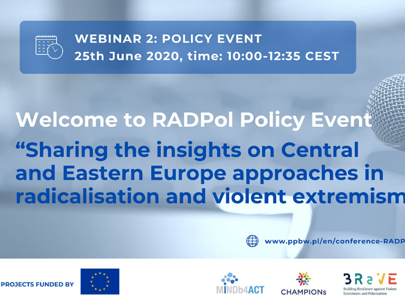 RADPol2020 Webinar 2 - Event presentation (Panel II) - thumbnail