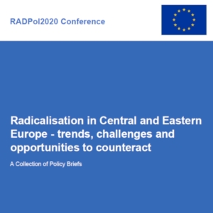 RADPol2020 - policy briefs