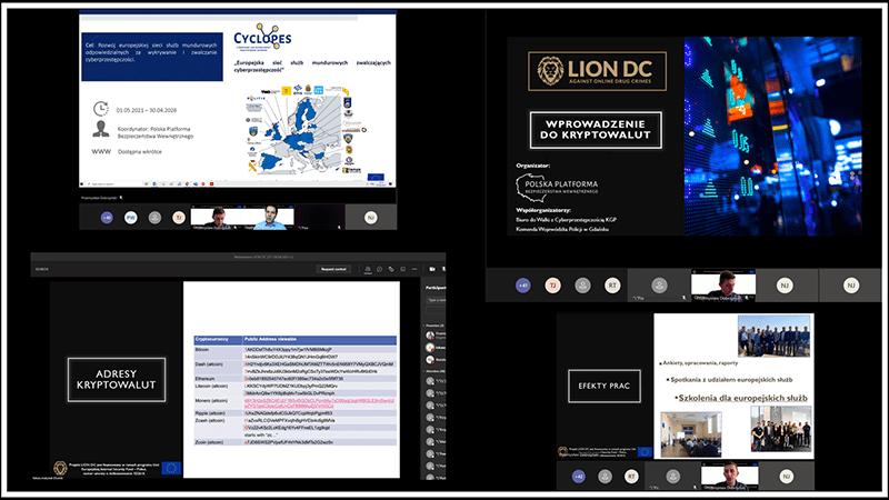 LION DC PL webinarium - 1. edycja